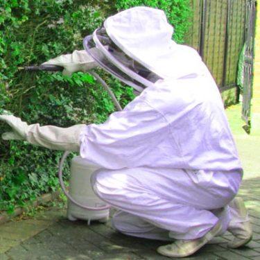 Pest Exterminator Canada